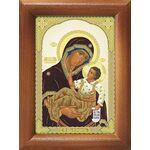 Муромская икона Божией Матери, рамка 7,5*10 см - Иконы