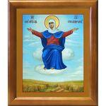 """Икона Божией Матери """"Спорительница хлебов"""", рамка 20*23,5 см - Иконы"""