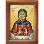 Преподобный Симеон Столпник Антиохийский, икона в рамке 7,5*10 см - Иконы