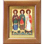 Мученики и исповедники Гурий, Самон и Авив, широкая рамка 14,5*16,5 см - Иконы
