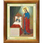 """Икона Божией Матери """"Целительница"""", рамка 17,5*20,5 см - Иконы"""