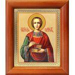 Великомученик и целитель Пантелеимон, икона в рамке 8*9,5 см - Иконы