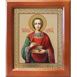 Великомученик и целитель Пантелеимон, икона в рамке 12,5*14,5 см - Иконы