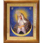 Икона Божией Матери Остробрамская Виленская, рамка 17,5*20,5 см - Иконы