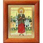 Блаженная Ксения Петербургская, ростовая, икона в рамке 8*9,5 см - Иконы