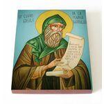 Преподобный Василий Поляномерульский, икона на доске 13*16,5 см - Иконы