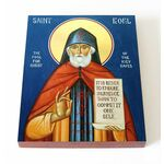 Преподобный Феофил Киевский, Христа ради юродивый, доска 13*16,5 см - Иконы