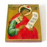 Пророк Даниил, икона на доске 13*16,5 см - Иконы