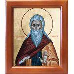 Преподобный Иларион Псковоезерский, Гдовский, икона в рамке 12,5*14,5 - Иконы