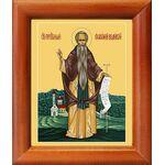 Преподобный Евфимий Великий, икона в рамке 8*9,5 см - Иконы