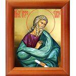 Святой пророк Иезекииль, икона в рамке 8*9,5 см - Иконы