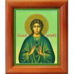Преподобный Аркадий Новоторжский, Вяземский, икона в рамке 8*9,5 см - Иконы