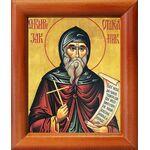 Преподобный Кириак Палестинский, отшельник, икона в рамке 8*9,5 см - Иконы