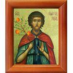 Преподобный Евфросин Палестинский, повар, икона в рамке 8*9,5 см - Иконы