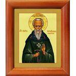 Преподобный Никита Мидикийский, исповедник, икона в рамке 8*9,5 см - Иконы