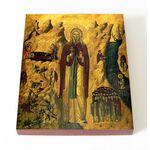 Преподобный Иоанн Отшельник, Палестинский, икона на доске 13*16,5 см - Иконы