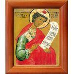 Пророк Даниил, икона в рамке 8*9,5 см - Иконы