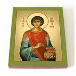 Великомученик и целитель Пантелеимон, доска 13*16,5 см - Иконы