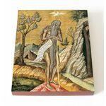 Преподобный Онуфрий Великий, икона на доске 13*16,5 см - Иконы