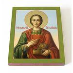 Великомученик и целитель Пантелеимон, на доске 13*16,5 см - Иконы