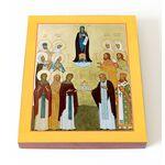 Собор Дивеевских святых, икона на доске 13*16,5 см - Иконы