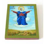 """Икона Божией Матери """"Спорительница хлебов"""", печать 13*16,5 см - Иконы"""