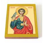 Мученик Трифон Апамейский, икона на доске 13*16,5 см - Иконы