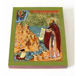 Преподобный Феодорит Кольский, икона на доске 13*16,5 см - Иконы