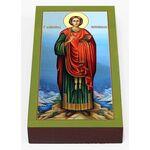 Великомученик и целитель Пантелеимон, икона на доске 7*13 см - Иконы
