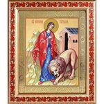 Мученица Татиана Римская, икона в рамке с узором 19*22,5 см - Иконы
