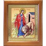 Мученица Татиана Римская, икона в широкой рамке 19*22,5 см - Иконы