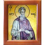 Преподобный Мартиниан Кесарийский, икона в рамке 12,5*14,5 см - Иконы