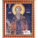 Преподобный авва Дорофей Палестинский, икона в рамке узором 21,5*25 см - Иконы