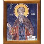 Преподобный авва Дорофей Палестинский, икона в рамке 20*23,5 см - Иконы