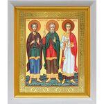 Мученики и исповедники Гурий, Самон и Авив, белый киот 19*22 см - Иконы