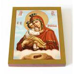 Почаевская икона Божией Матери, печать на доске 13*16,5 см - Иконы