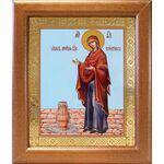 """Икона Божией Матери """"Геронтисса"""", широкая рамка 19*22,5 см - Иконы"""