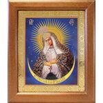 Икона Божией Матери Остробрамская Виленская, широкая рамка 19*22,5 см - Иконы
