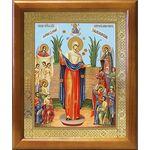 """Икона Божией Матери """"Всех скорбящих Радость"""" с грошиками, 17,5*20,5 см - Иконы"""