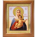 """Икона Божией Матери """"Аз есмь с вами и никтоже на вы"""", в рамке 19*22,5 - Иконы"""