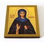 Блаженная Мария Хиданская, икона на доске 14,5*16,5 см - Иконы