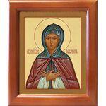 Преподобная Аполлинария, икона в рамке 12,5*14,5 см - Иконы