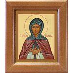 Преподобная Аполлинария, икона в широкой рамке 14,5*16,5 см - Иконы