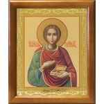 Великомученик и целитель Пантелеимон, рамка 17,5*20,5 см - Иконы