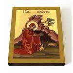 Преподобная Мелангелла Валлийская, икона на доске 13*16,5 см - Иконы