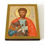 Мученик Трофим Ликийский, икона на доске 13*16,5 см - Иконы