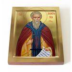 Святитель Анастасий I Синаит, патриарх Антиохийский, на доске 13*16,5 - Иконы