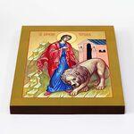Мученица Татиана Римская со львом, икона на доске 20*25 см - Иконы