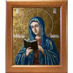 Калужская икона Божией Матери, широкая рамка 19*22,5 см - Иконы