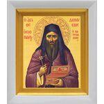 Преподобномученик Дионисий Ватопедский, икона в белом киоте 14*16 см - Иконы